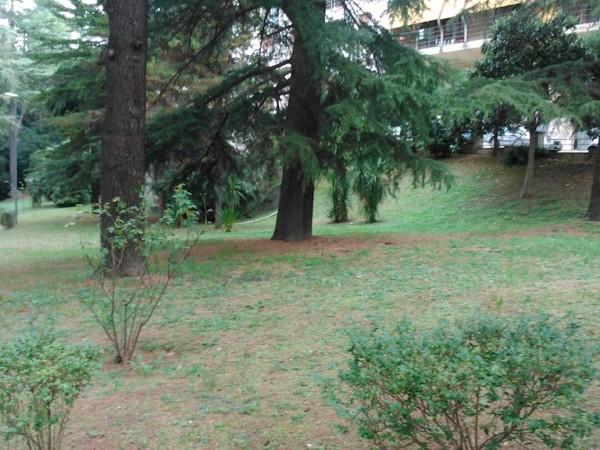 manutenzione verde Parco ex Luciani